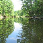 """Cobbossee """"Upstream"""""""