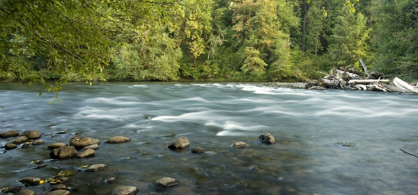 advocating for free flowing rivers