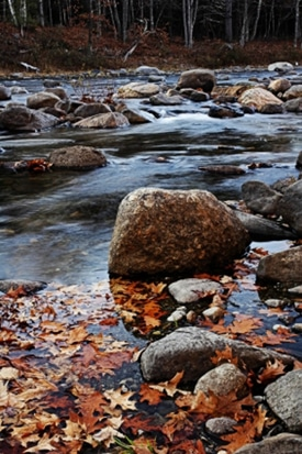 Maine River