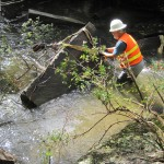 Royal River Restoration Project summer 2012